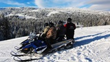 Two Top Snowmobiles